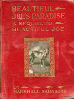 NYSL Decorative Cover: Beautiful Joe's paradise