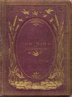 NYSL Decorative Cover: Bird