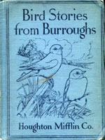 NYSL Decorative Cover: Bird stories from Burroughs