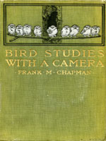 NYSL Decorative Cover: Bird studies with a camera