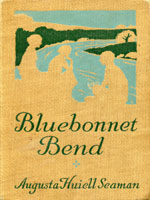 NYSL Decorative Cover: Bluebonnet Bend