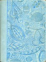 NYSL Decorative Cover: Burmese days