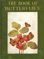 NYSL Decorative Cover: Butterflies worth knowing
