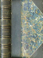 NYSL Decorative Cover: Little Dorrit