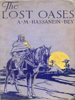NYSL Decorative Cover: Lost oases