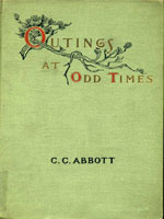NYSL Decorative Cover: Outings at odd times