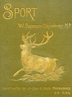 NYSL Decorative Cover: Sport