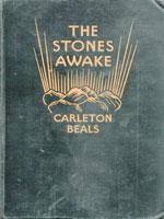 NYSL Decorative Cover: Stones awake