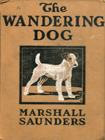 NYSL Decorative Cover: Wandering dog
